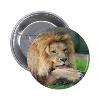 Lion Safari Cute African Classy Pins