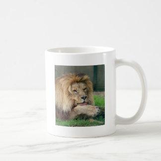 Lion Safari Cute African Classy Classic White Coffee Mug