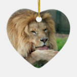 Lion Safari Cute African Classy Christmas Tree Ornaments