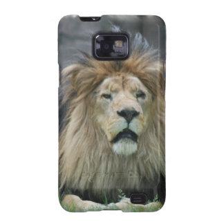 Lion  Samsung Galaxy Case Samsung Galaxy S2 Cases