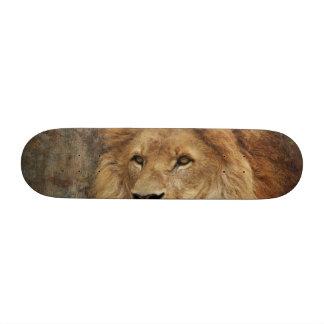Lion Skateboards