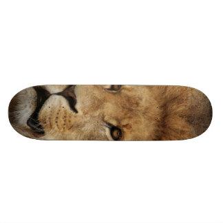 Lion Skate Decks