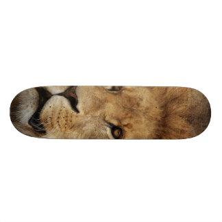 Lion Custom Skate Board