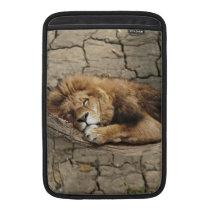 Lion sleeping Animal wild Cat stone MacBook Air Sleeve