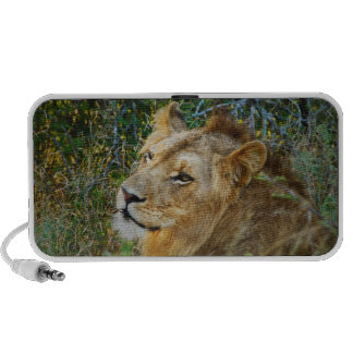Lion iPod Speakers