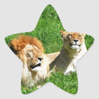 Lion Star Stickers