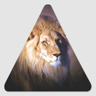 Lion Triangle Stickers