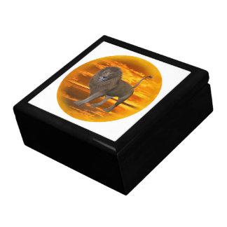 Lion Sunset gift box