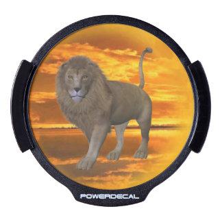 Lion sunset LED car decal