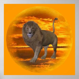 Lion Sunset Poster