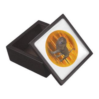 Lion Sunset Premium Gift Box