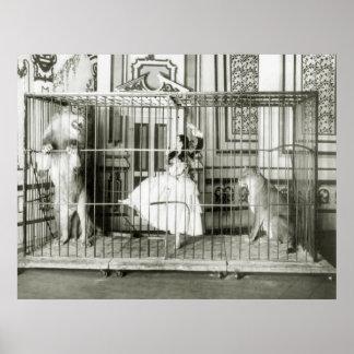 Lion Tamer: 1897 Poster