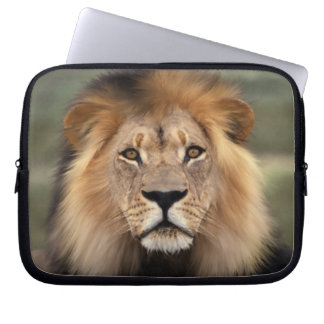 Lion - The King of The Jungle Laptop Computer Sleeve