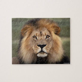 Lion - The King of The Jungle Jigsaw Puzzle