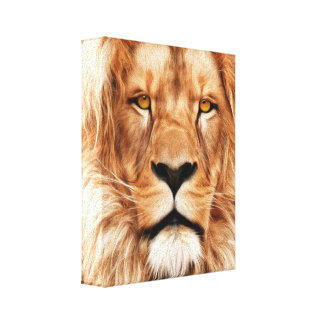 Lion The King Photo Painting Canvas Print