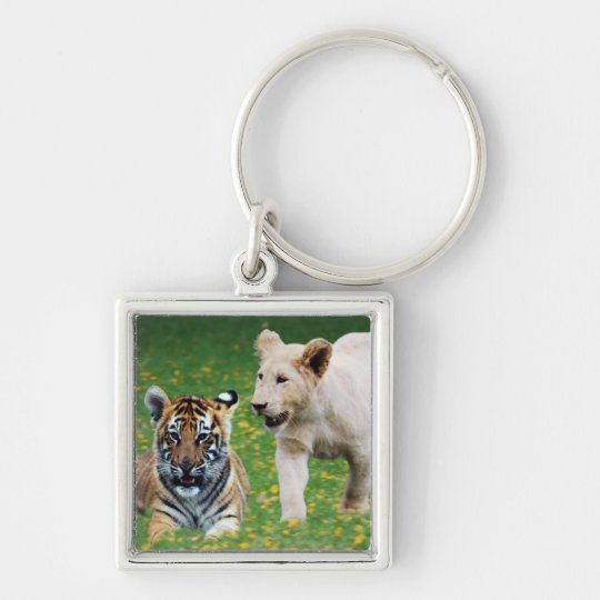 Lion & tiger cubs at play keychain