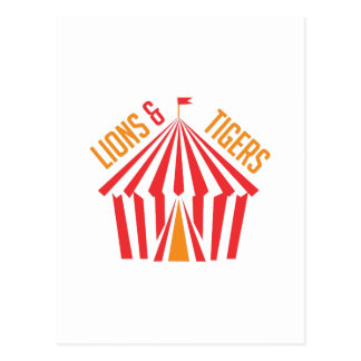 Lion & Tigers Postcard