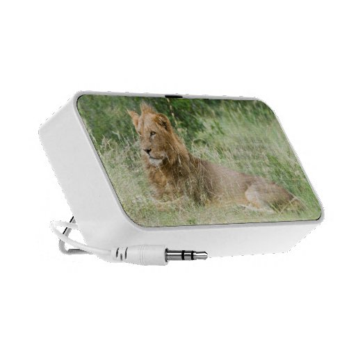 Lion Travel Speaker