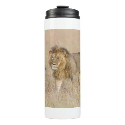 Lion walking thermal tumbler