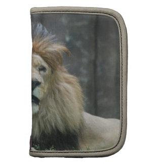 Lion  Wallet Folio Organizers