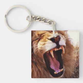 Lion Whisperer Key Ring Keychain