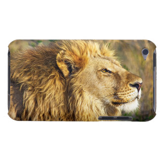 Lion Wild Animal Wildlife Safari iPod Case-Mate Case