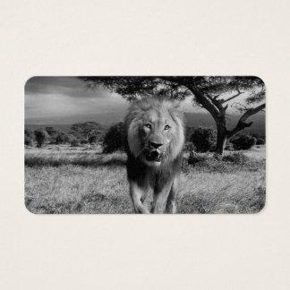 Lion Wildcat Business Card