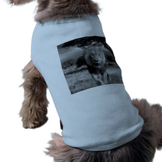 Lion Wildcat Shirt