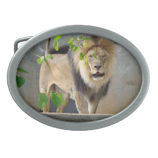 Lion Wildlife Belt Buckle
