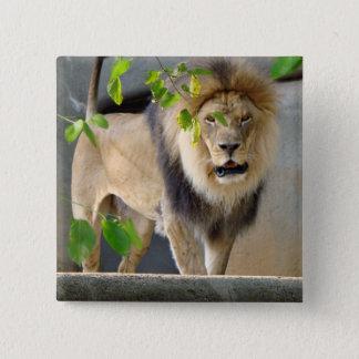 Lion Wildlife Button