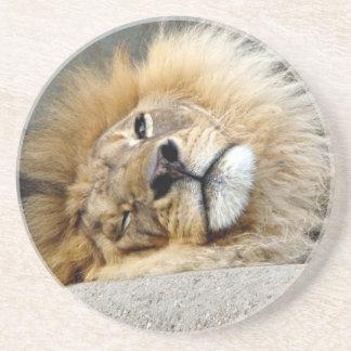Lion Wink Coaster