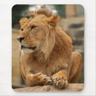 Lion with punk hair-style mouse pad