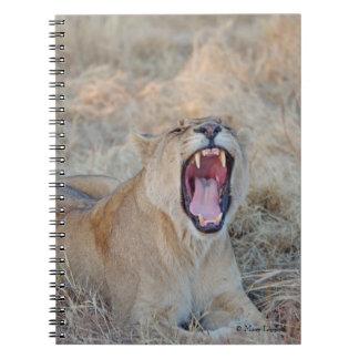 Lion Yawn Journal Spiral Notebook