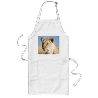 Lioness against blue sky long apron