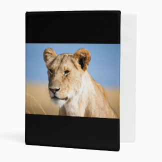 Lioness against blue sky mini binder