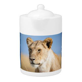 Lioness against blue sky teapot
