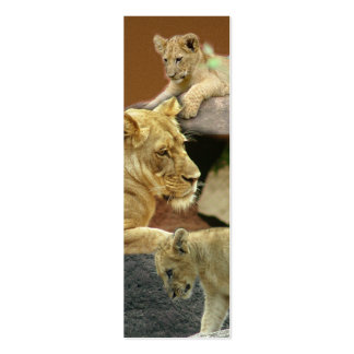 Lioness and Cubs Mini Bookmark Business Cards