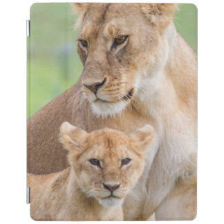 Lioness and Lion Cub iPad Smart Cover