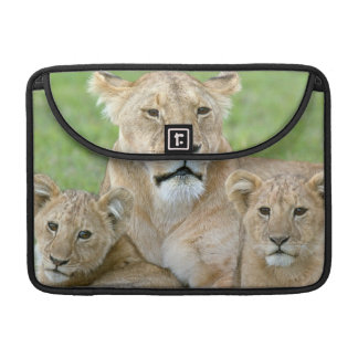 Lioness and Two Cubs, East Africa, Tanzania, MacBook Pro Sleeves