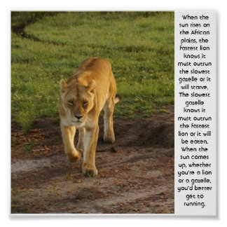 Lioness at Masai Mara Inspirational Poster