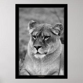 Lioness (BW Version) Print