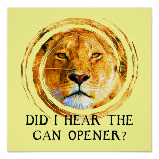 LIONESS ... CAN OPENER Poster
