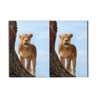 Lioness Cases For iPad Mini