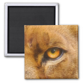 Lioness Eye Big Cat Wildlife Magnet