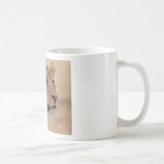 Lioness head closeup coffee mugs