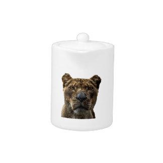 Lioness Head Teapot