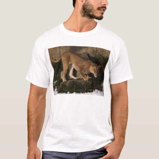 Lioness hunting T-Shirt