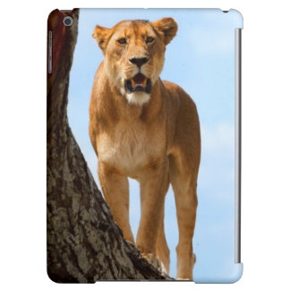 Lioness iPad Air Cover