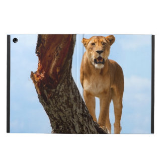 Lioness iPad Air Covers
