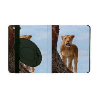 Lioness iPad Folio Case